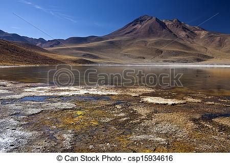 Stock Photography of Laguna Miscanti.