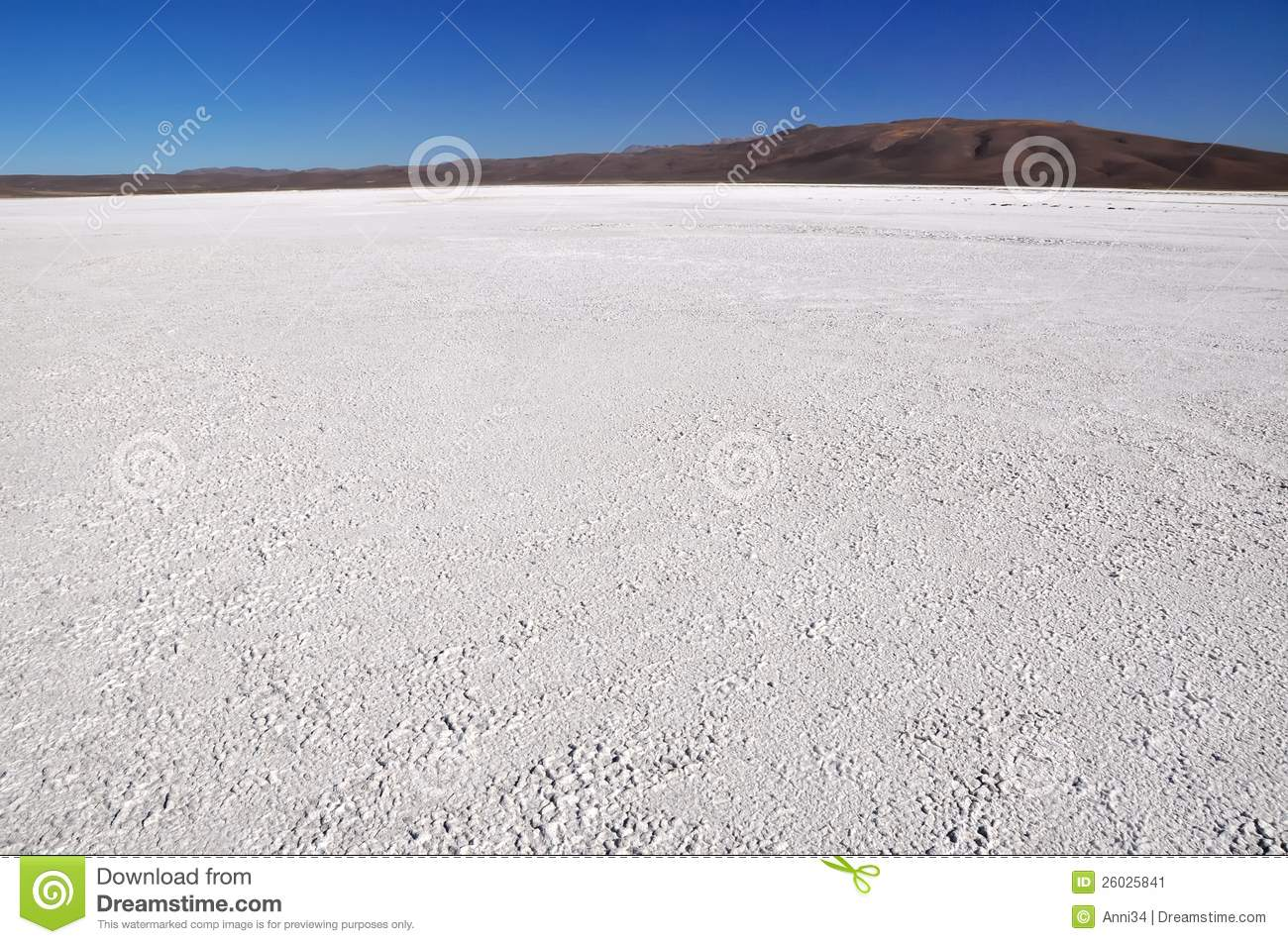 Salt Pan In The Atacama Desert In Chile Stock Image.