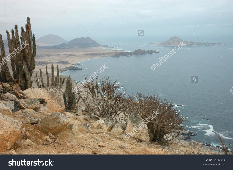 Desert Coast Of Chile (Atacama Desert) Stock Photo 17184124.