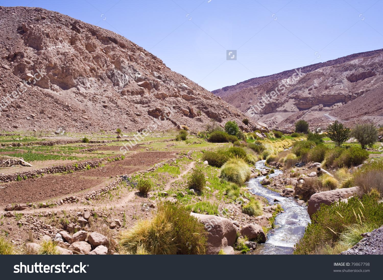 Altiplano, Atacama Desert, Chile, South America Stock Photo.