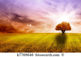 Atardecer Stock Illustrations. 7 atardecer clip art images and.