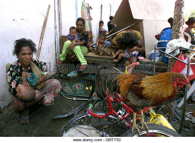 West Timor Stock Photos & West Timor Stock Images.