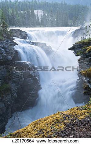Stock Photo of Athabasca Falls, Jasper National Park, Alberta.