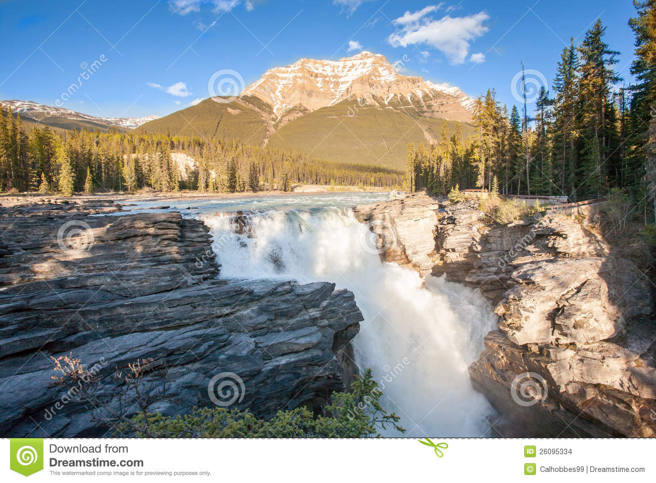 Athabasca Falls Stock Images.