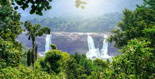 Beautiful National Park Kerala Stock Photos, Images, & Pictures.