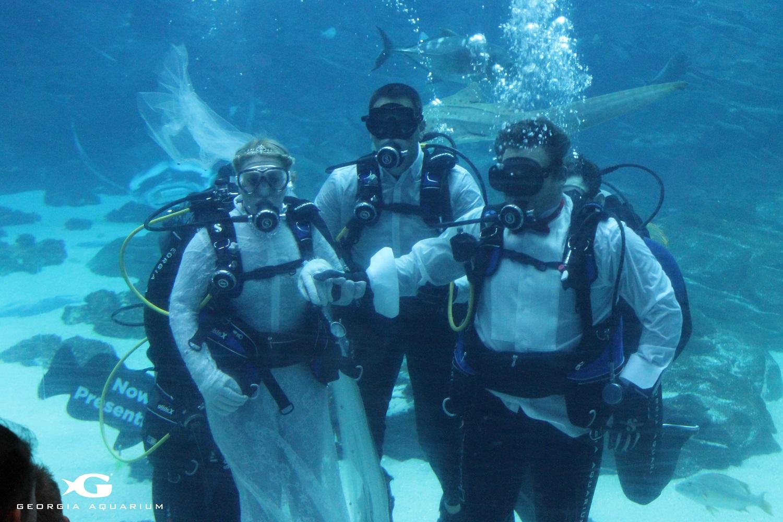 Georgia Aquarium Hosts First.