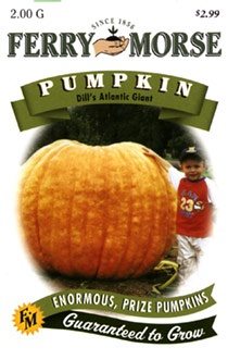 1000+ images about Giant Pumpkins on Pinterest.