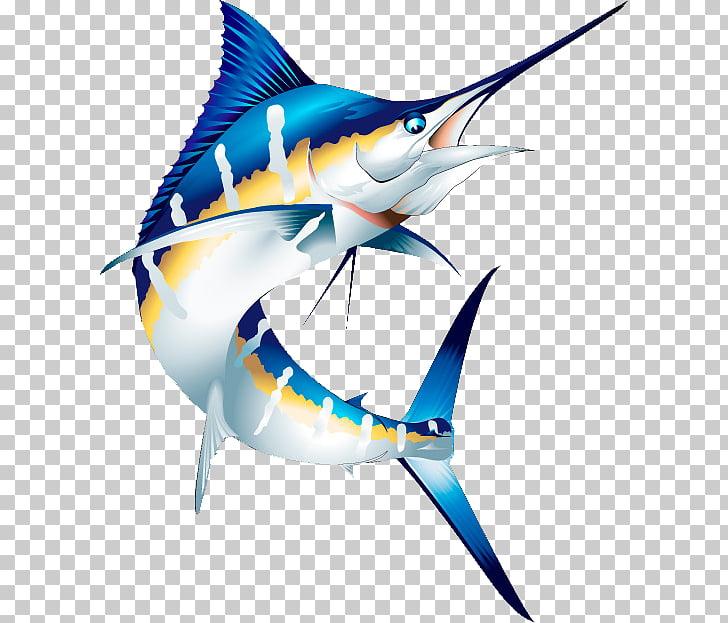 Atlantic blue marlin Marlin fishing Striped marlin , others.