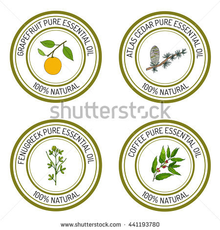 Atlas Cedar Stock Photos, Royalty.