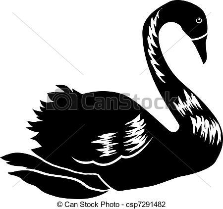 EPS Vector of artwork black swan (Cygnus atratus), sketch drawing.