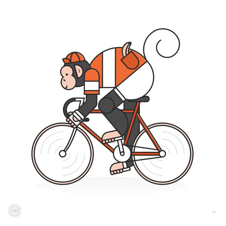 1000+ images about Cycling on Pinterest.