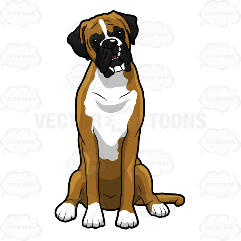 Boxer clipart dog.