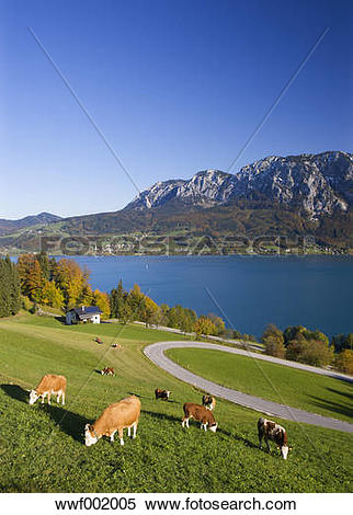 Stock Image of Austria, Attersee, View of Hoellen Mountain during.