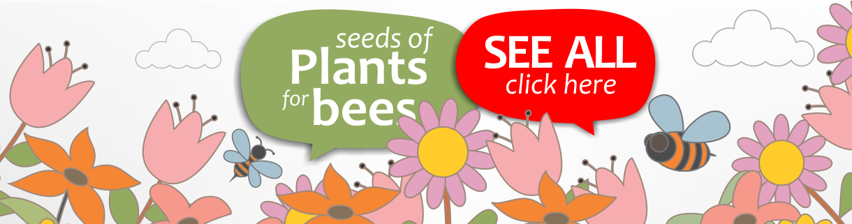 Tips For Attracting Bees: Plants That Attract Bees.