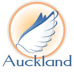 Auckland Airport Flight Status New Zealand International Live by.
