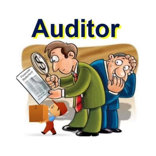 Statutory and Internal Audit Services in Kalkaji, New Delhi, Varun.