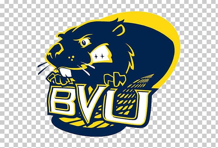 Buena Vista University Central College Wartburg College.