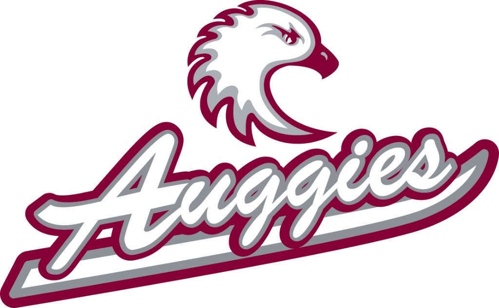 Augsburg Sports Information Download Page.