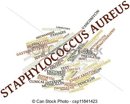 Clip Art of Staphylococcus aureus.