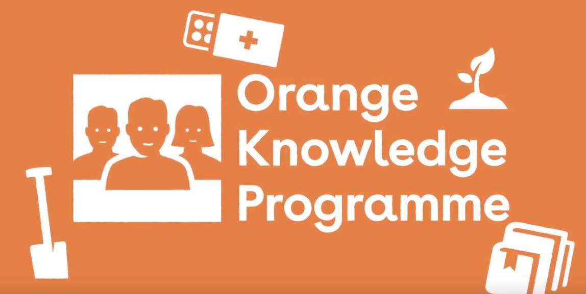 Orange Knowledge Programme (OKP) Scholarships for RNTC Courses 2019.