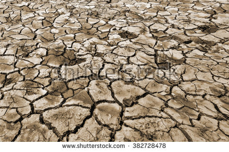 Dry Cracked Earth Texture Background Stock Foto 3101707.
