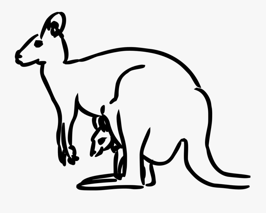 Kangaroo, Baby, Animal, Mammal, Jumping, Australia.