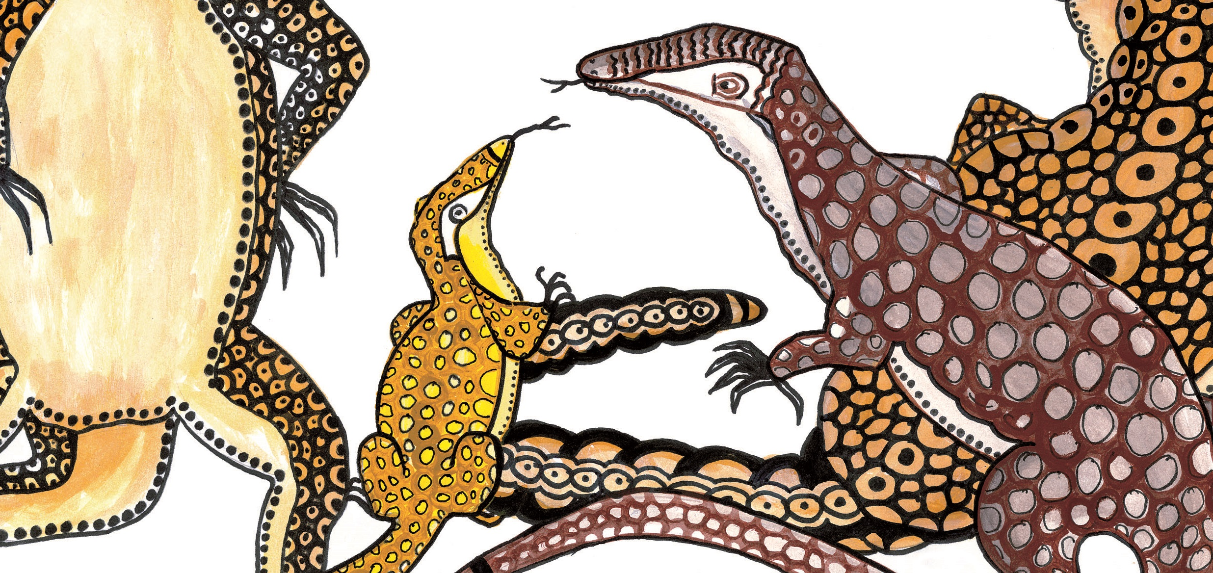Reading Australia and Magabala Books bring Indigenous.