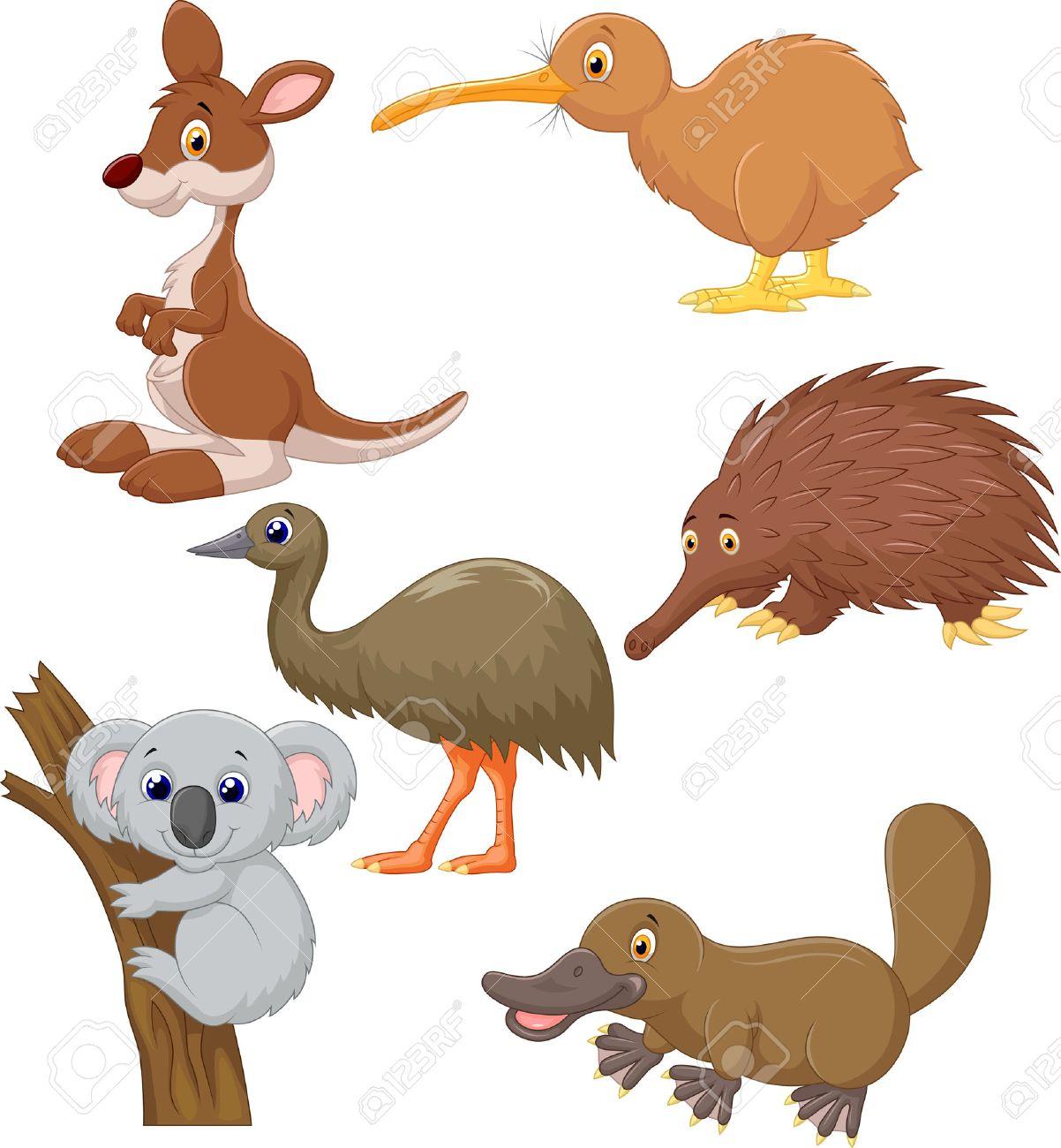 Australian animal cartoon.