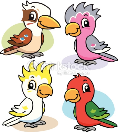 Australian Birds Vector Art.