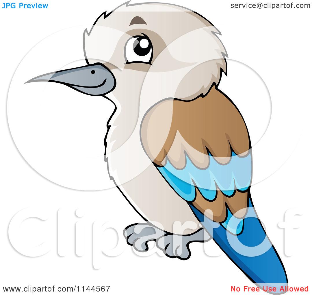Cartoon of a Cute Aussie Kookaburra Bird.