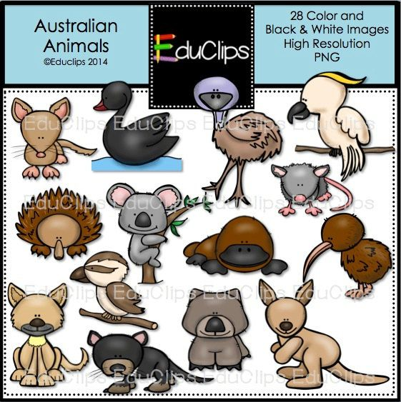 Australian animals, Clip art and Animals on Pinterest.