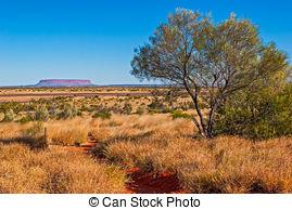 Australian bush Stock Photo Images. 3,140 Australian bush royalty.