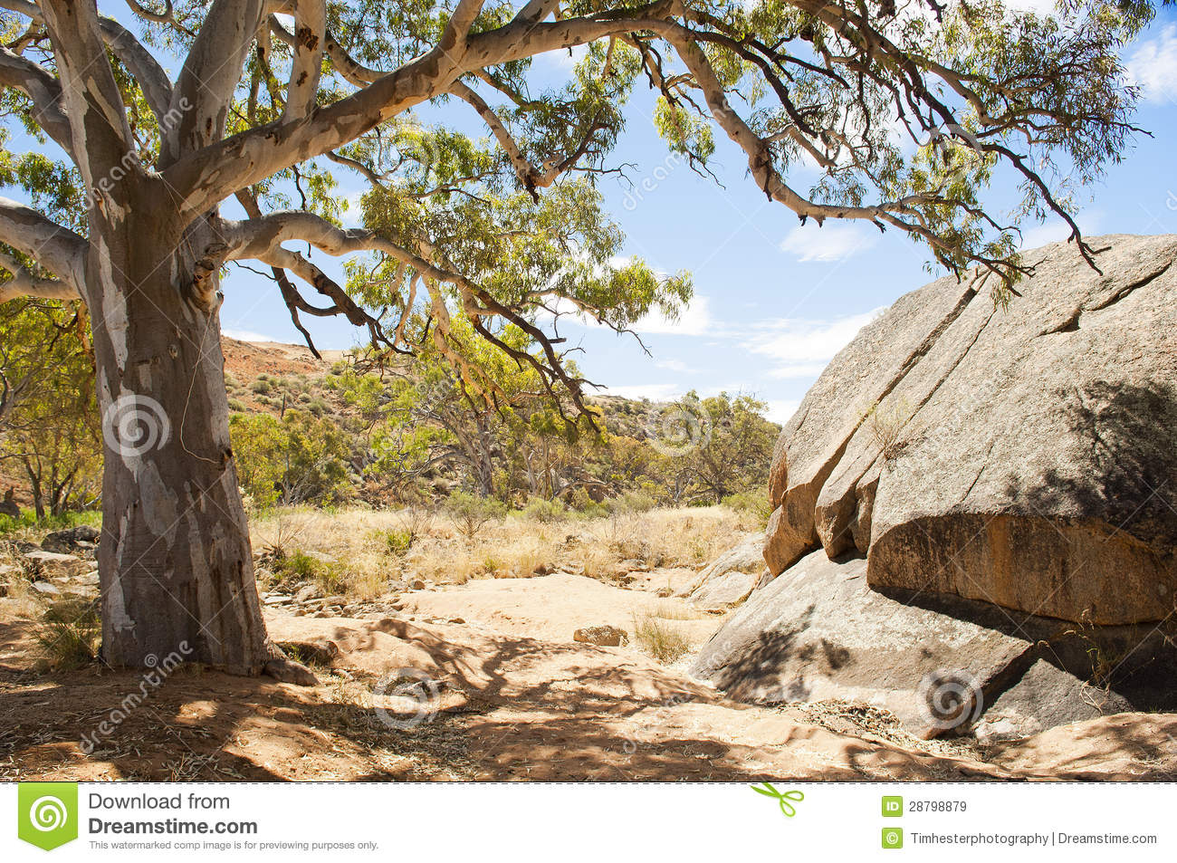 Australian Outback Oasis Royalty Free Stock Photos.