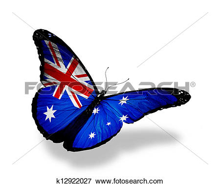 Stock Illustration of Australian flag butterfly flying, isolated.
