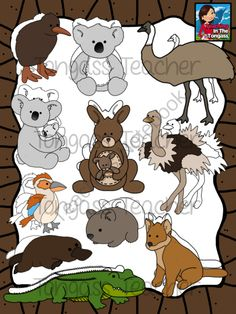 Australian animal name tags.