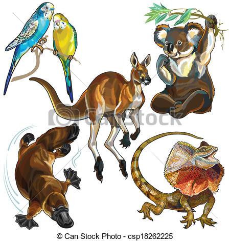 Vector Illustration of set with australian animals.