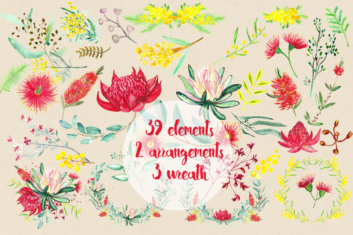 Australian Flowers Clipart 20 Free Cliparts Download