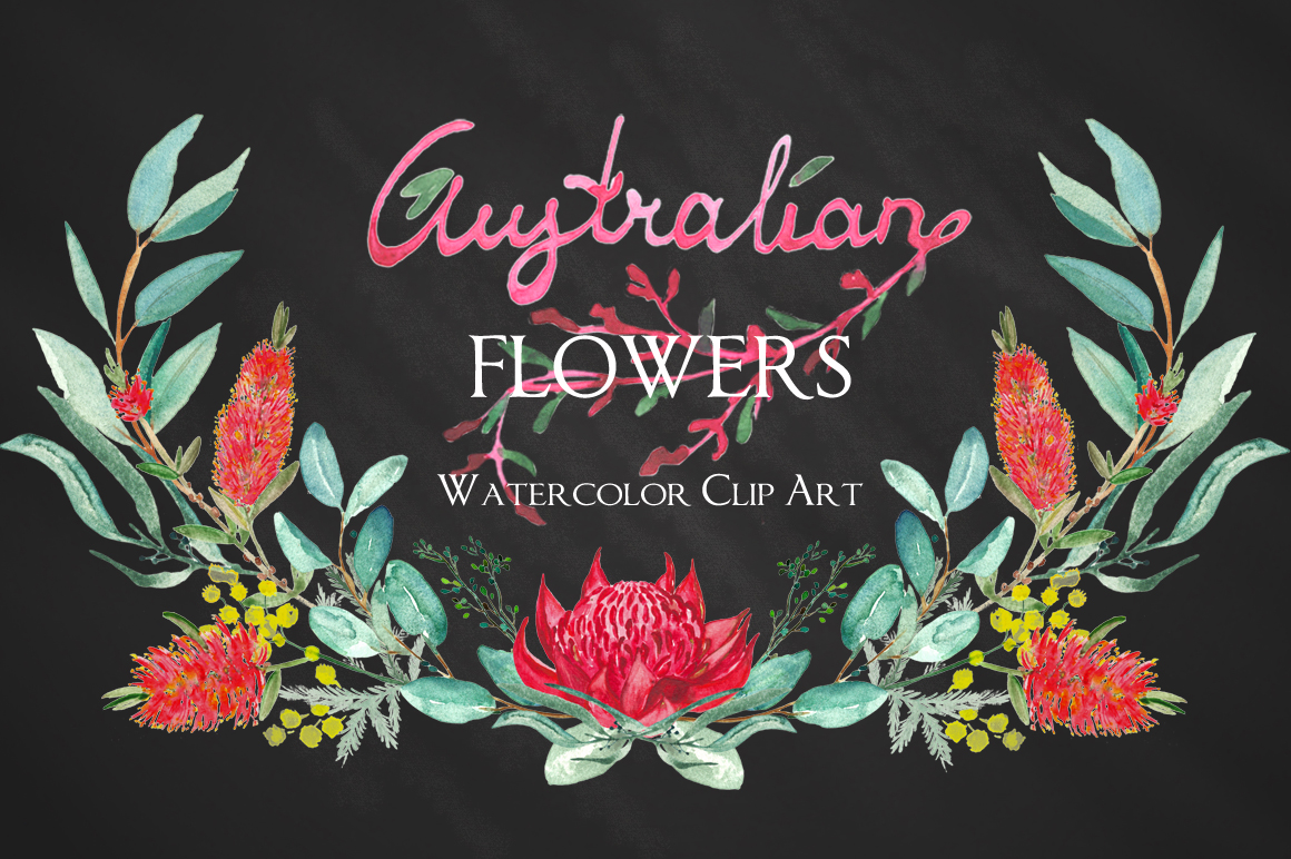 Australian flowers watercolor by LABFcreations.