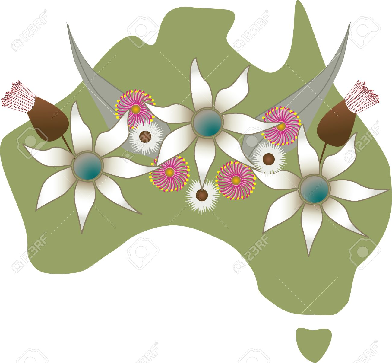 Map Of Australian With Native Flowers.