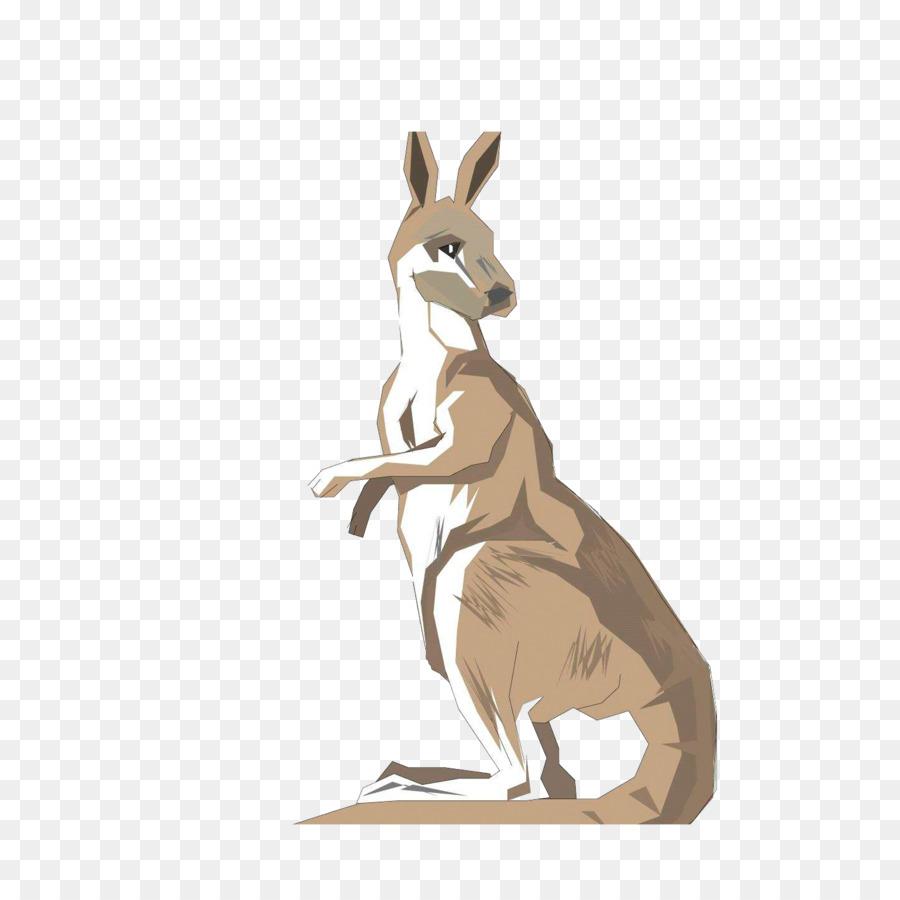 Australia Kangaroo Drawing Clip art.