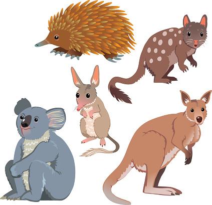 Australian Animal Clipart.