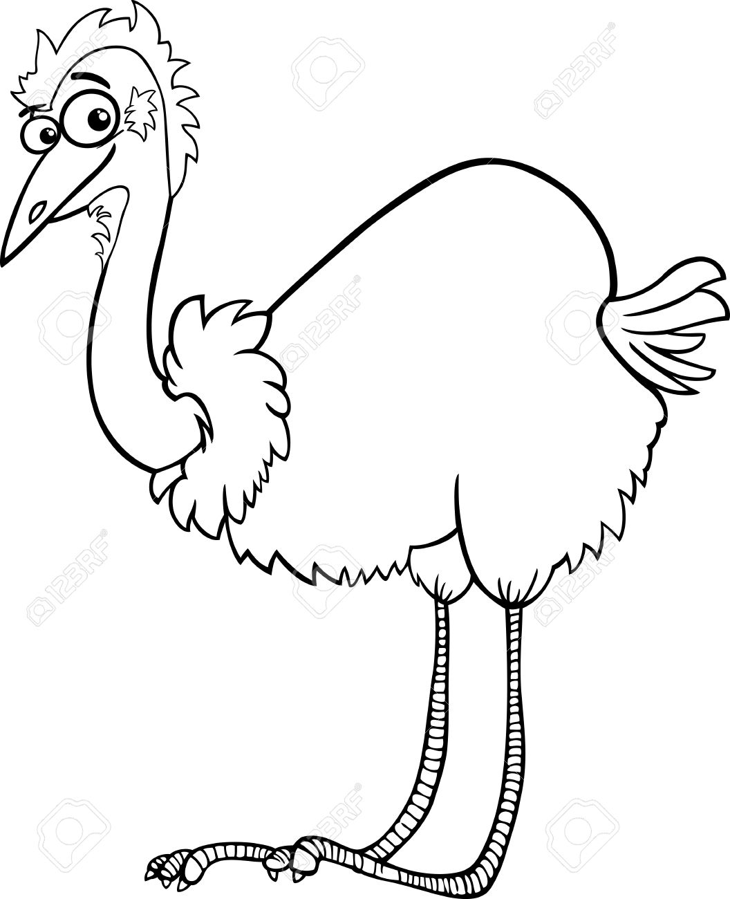 black and white clipart ostrich #13