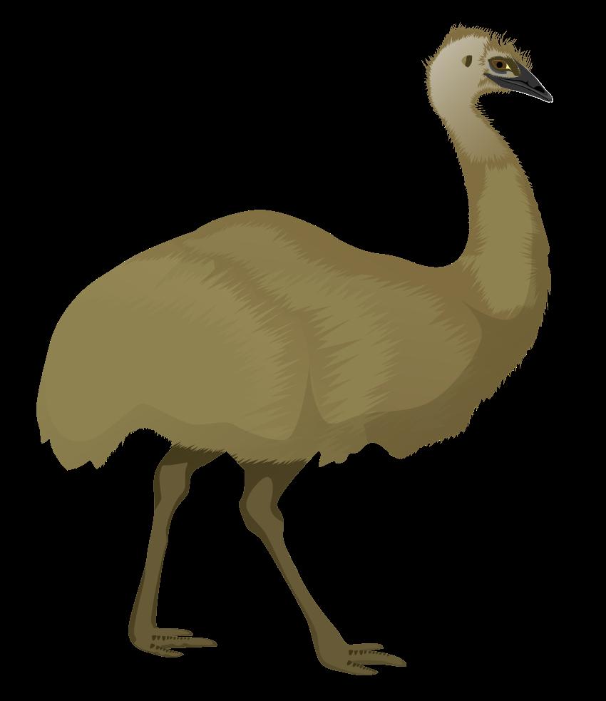 Free to Use & Public Domain Birds Clip Art.