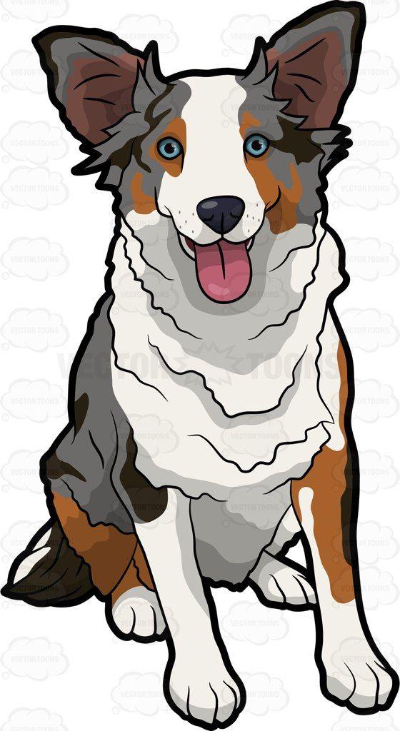 A cute Australian Shepherd #cartoon #clipart #vector.