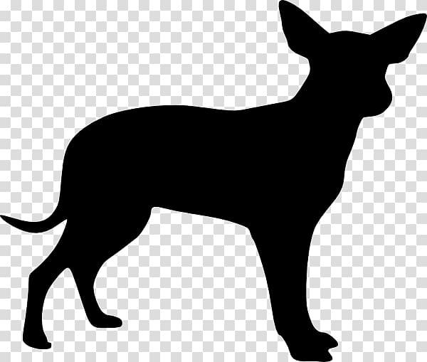 Australian Shepherd transparent background PNG cliparts free.