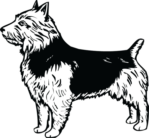 Australian Terrier Dog Clip Art For Engraved Products.