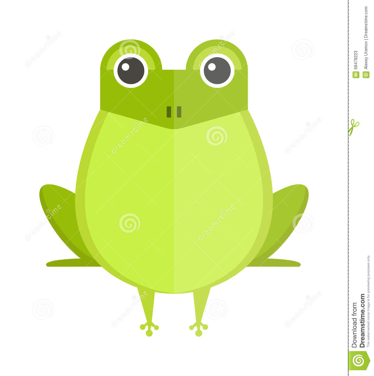Australian Green Tree Frog, Isolated On White Stock Vector.