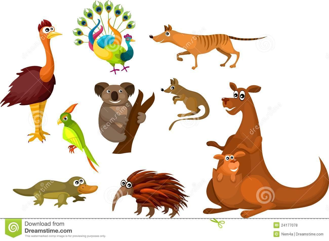 Australian wildlife clipart.