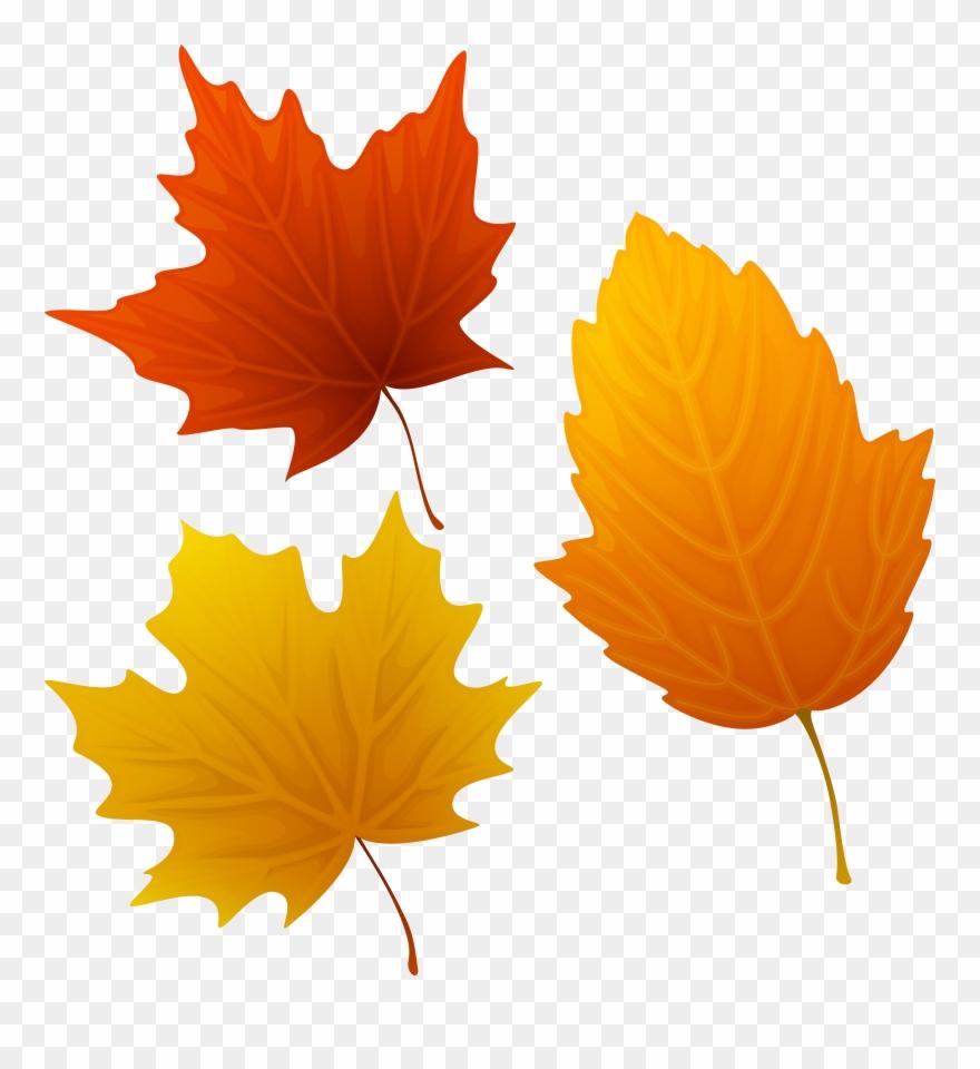 Clipart leaves autumn leaves, Clipart leaves autumn leaves.