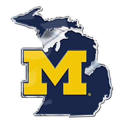 Amazon.com : PM Michigan Wolverines on State Background Auto.